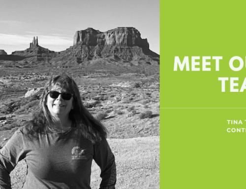 Meet Our Team: Tina Taylor